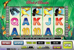 Play Birds of Paradise Slots now!