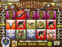 Play Western Wilderness Slots now!