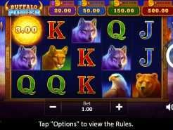 Buffalo Power: Hold and Win Slots